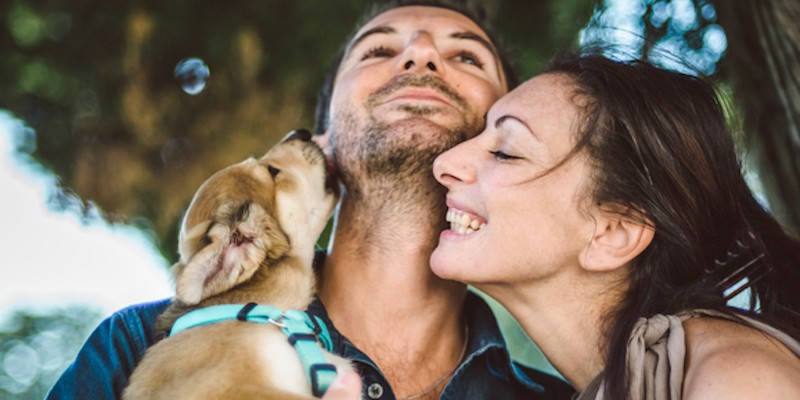 animals, relationships, happy, cute, laugh, smile, woman, girl, man, Dog, puppy