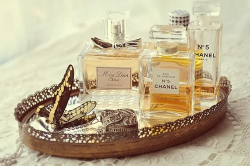 beauty, fragrance, perfume, makeup, chanel, butterfly