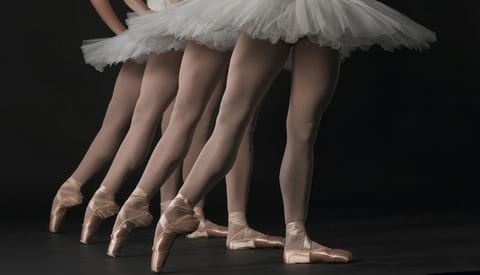 ballerinas, shoes, dance, ballet, career, fitness