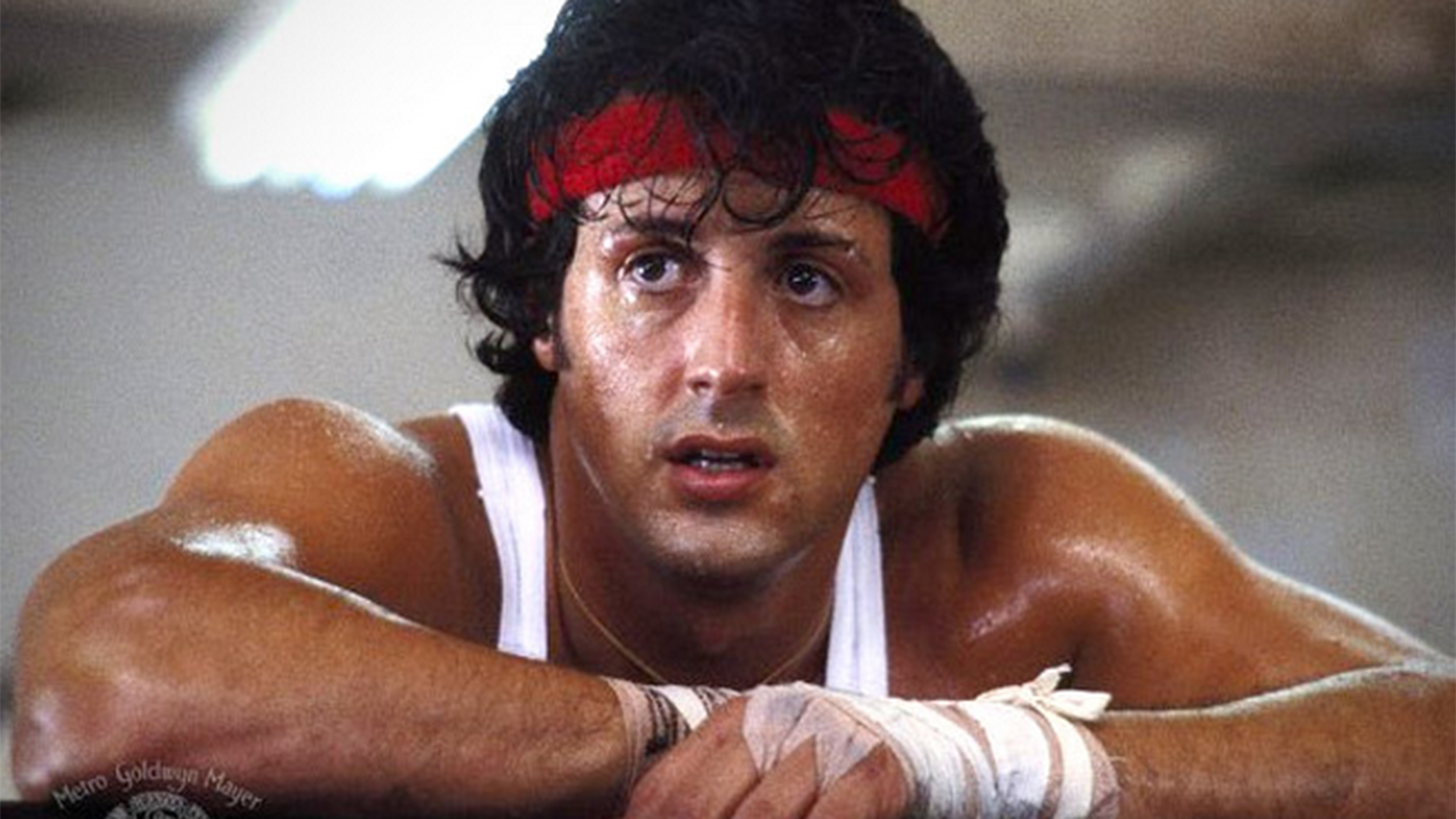 Rocky, cult classic, movies/tv, pop culture