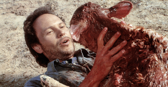 City Slickers, Billy Crystal, birth, movies/tv, celebs