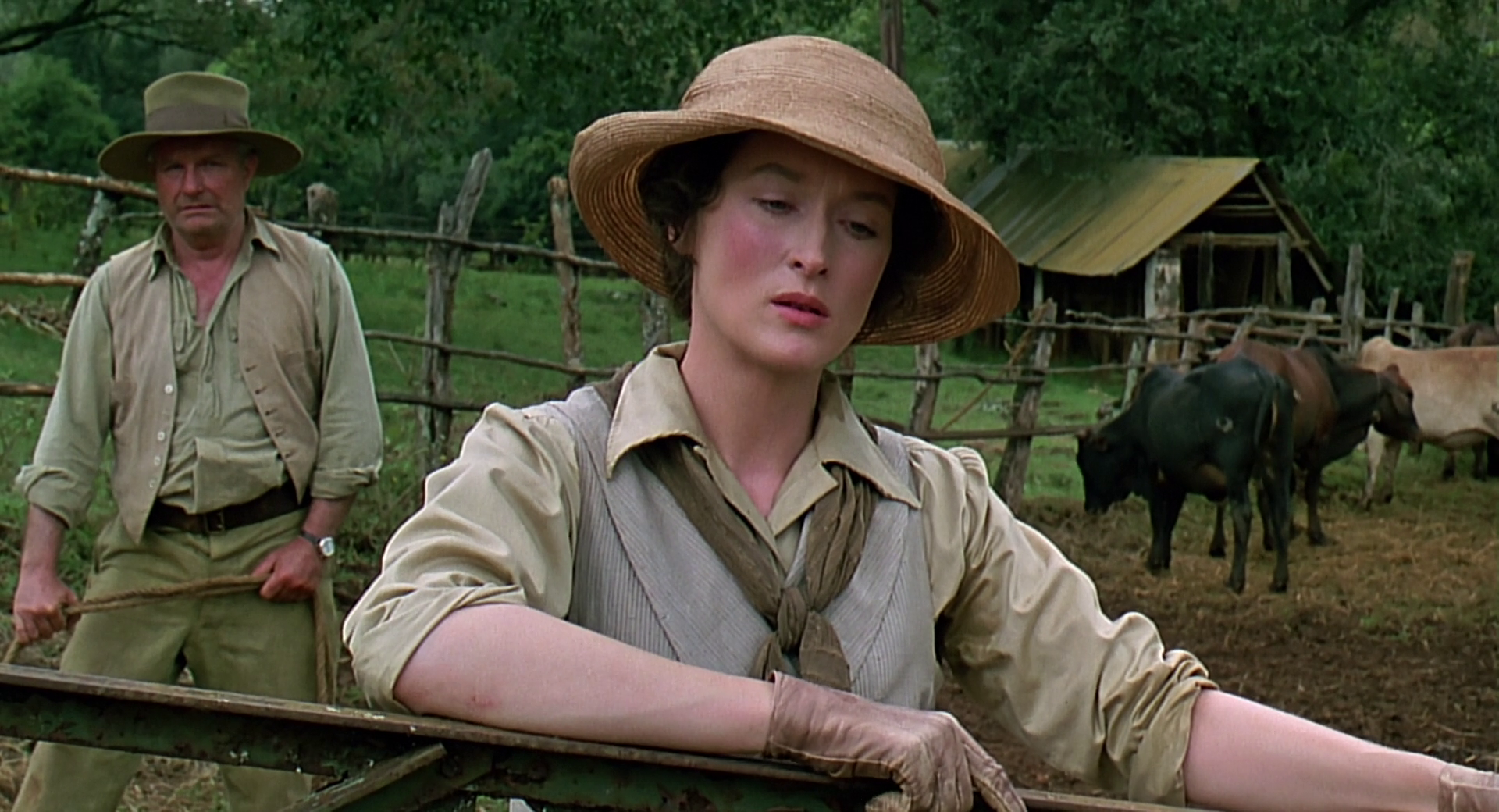 Out of Africa, meryl streep, movies/tv