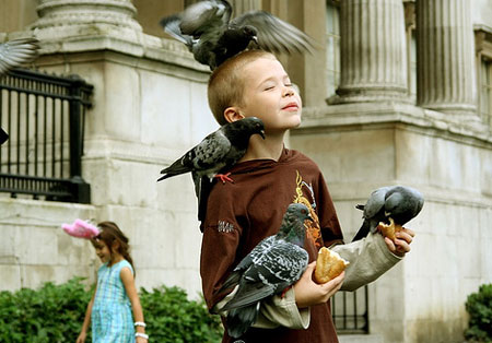 kid playing with pigeon