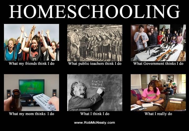 home schooling, movies/tv