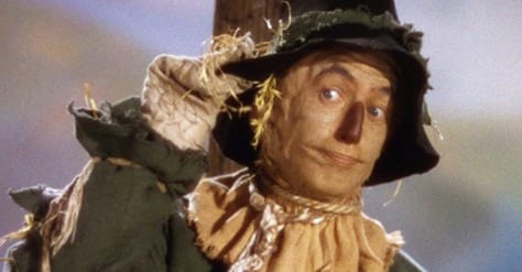 wizard of oz, scarecrow
