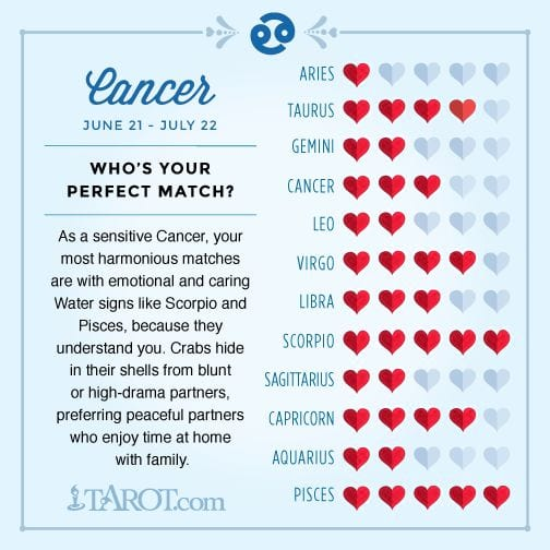 libra horoscope perfect match