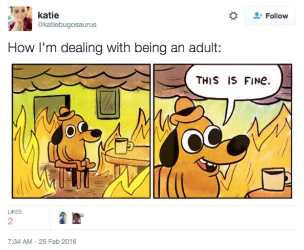 adult, Adulting
