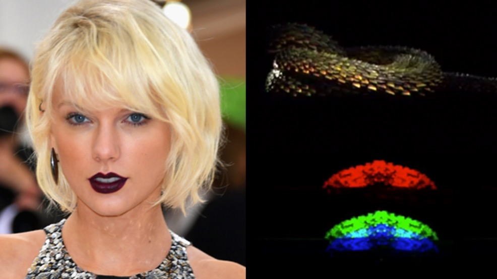 Taylor Swift, What Do The Numbers 2 and 5 In Taylor Swift's Snake Videos Mean?