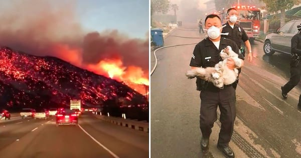 california, wild fires, nature, police, rescue, hs