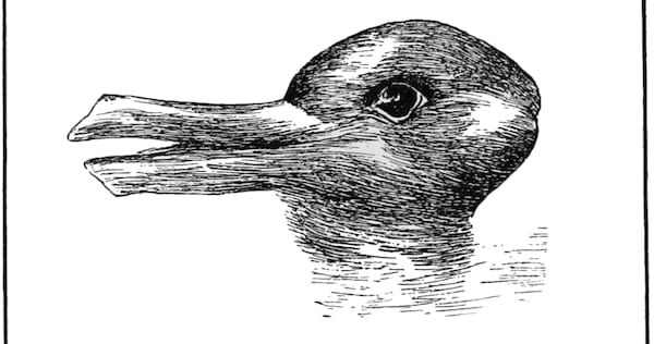 rabbit, duck, optical illusion, hs
