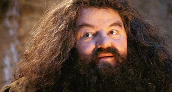 harry potter, hagrid, Harry Potter and the Sorcerer's Stone