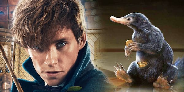 Quiz-Can-You-Identify-These-Fantastic-Beasts-From-Harry-Potter
