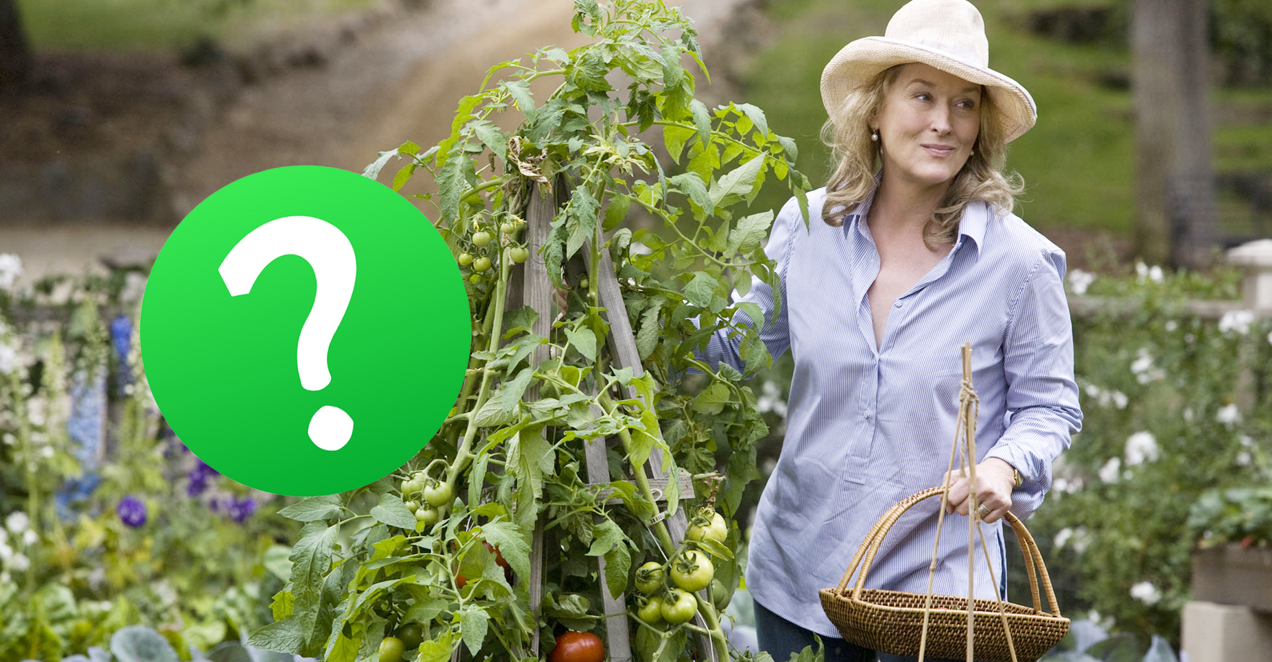 Quiz-No-Farmer-Will-Be-Able-To-Ace-This-Advanced-Business-Quiz-Can-You