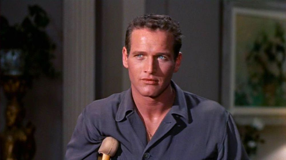 movies/tv, classic, paul newman, celebs