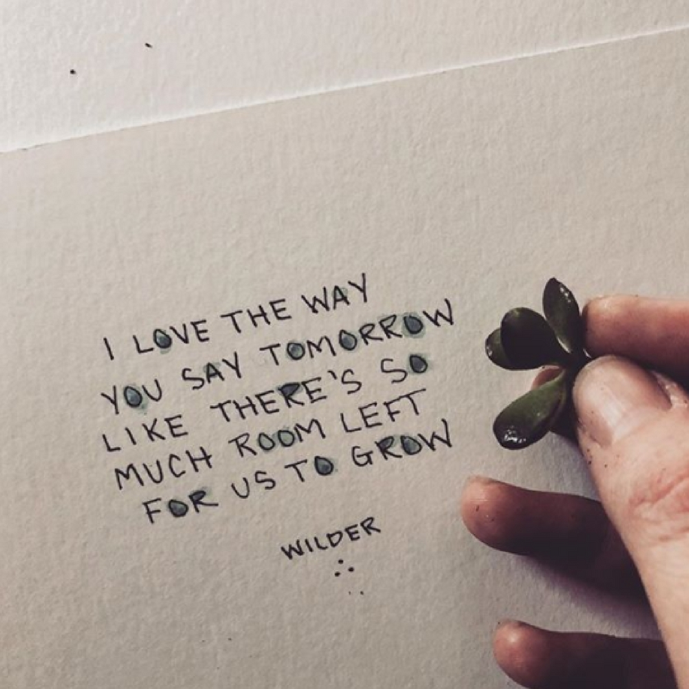 The 10 Best Poetry Instagrams You Should Be Following, poetry, poem, Wilder Poetry