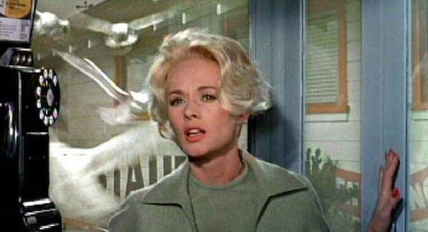 movies, The Birds, tippi hedren