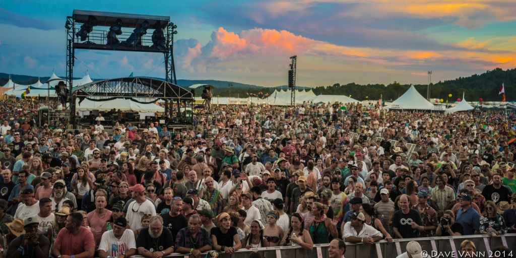 lockn' festival, science & tech, Music, pop culture