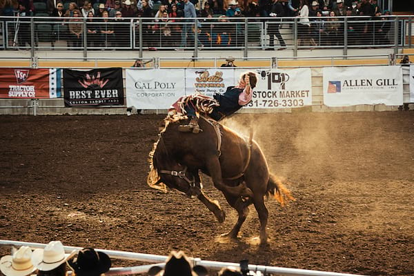man on a bucking bronco in a rodeo arena