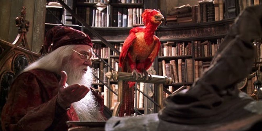 movies, harry potter, albus dumbledore, Phoenix, Harry Potter and the Chamber of Secrets