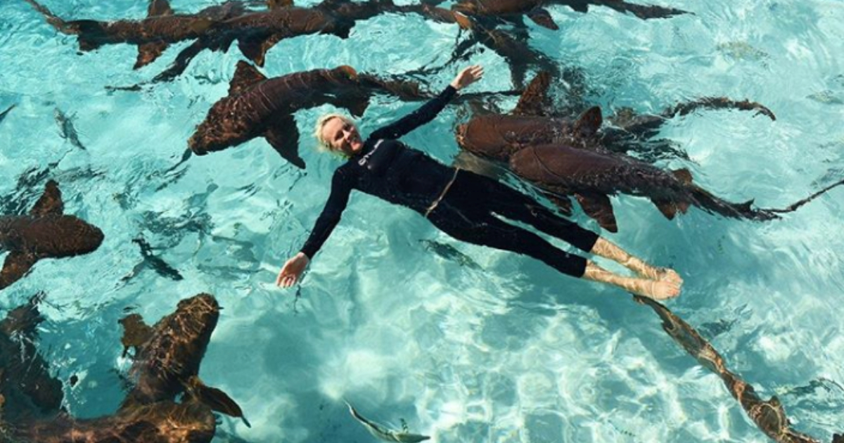 Woman swimming with sharks