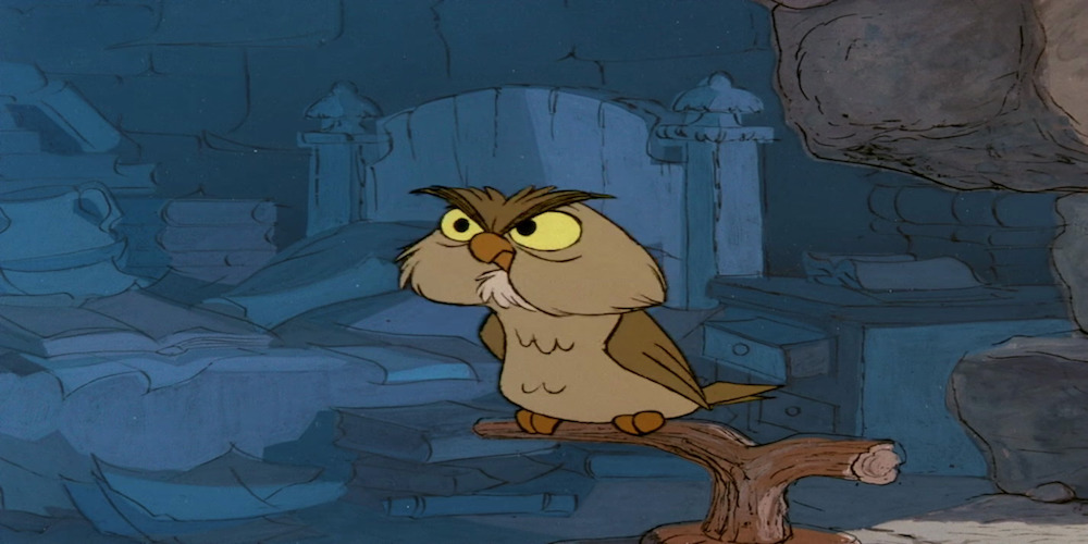 Archimedes from Disney's \The Sword in The Stone\ sits on a branch and scowls, movies