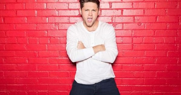 Niall Horan IG photo snarling into the camera in front of red bricks, niall horan instagram captions song lyrics and quotes