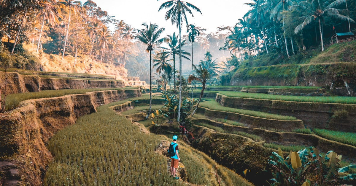 A man exploring Bali, Indonesia., science & tech, travel