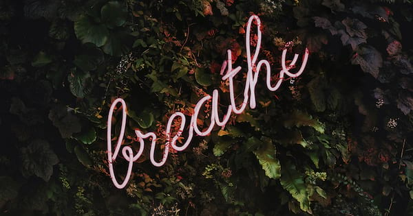 cute pink \breathe\ neon lights on a green bush, best pregnancy podcasts 2018