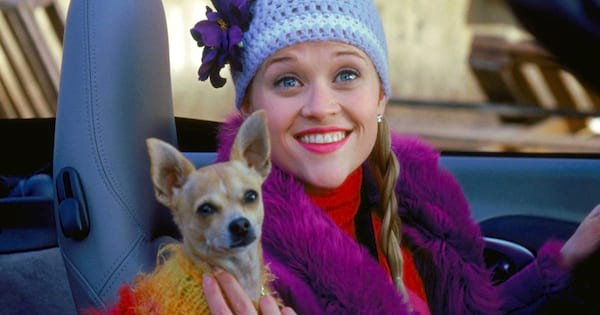 legally blonde, reese witherspoon, elle woods, pets, Dog, animal, animals, pet, hero