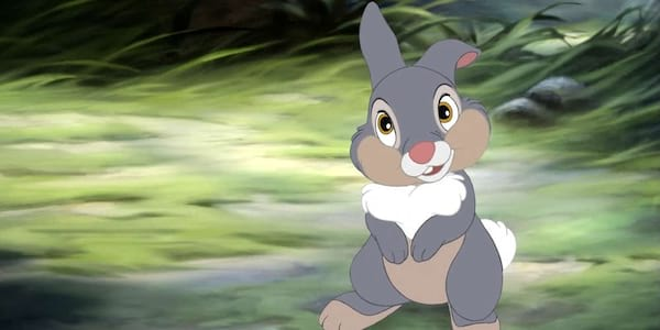 Thumper from Disney's Bambi stands in the forest clearing., movies