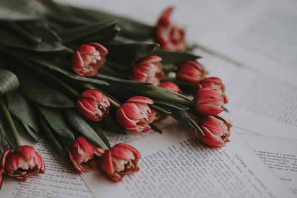 flowers on top of pages of a book
