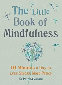Book cover for The Little Book of Mindfulness