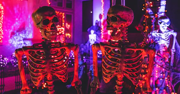 Skeleton Instagram captions, two skeletons posed next to each other with colorful lights in the background