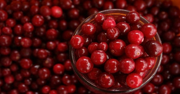 cranberries in bowl, thanksgiving