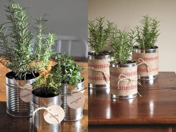 Best DIY Holiday Gifts, two photos of mini herb gardens in recycled cans, relationships, family