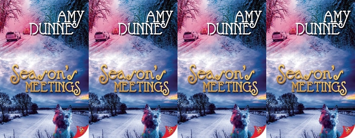 Holiday Books For Bi and Lesbian Romantics, the cover of Season's Meetings by Amy Dunne, books