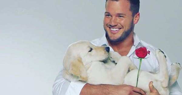 Who does colton end up with on the bachelor 2019, married, engaged, does colton underwood find love