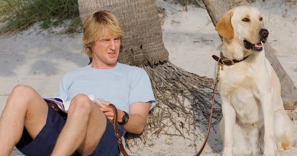 Marley and Me, dogs