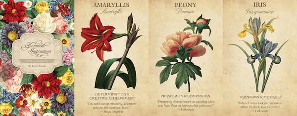 Oracle Decks For Beginners, four images of the Botanical Inspirations Deck, culture
