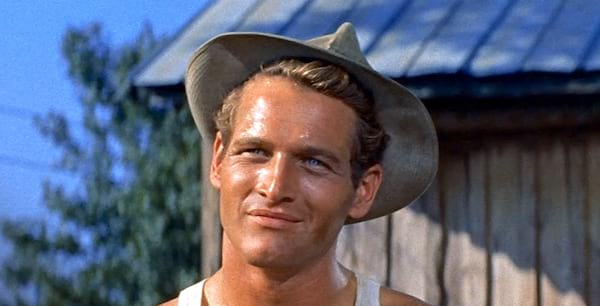 the long hot summer, paul newman, Southern, South