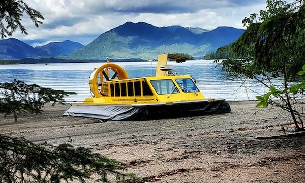 Hovercraft Eco Adventure & Wildlife Viewing from Groupon