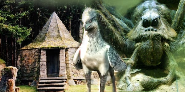 potterhead quiz, magical creatures quiz, HP animals quiz, Harry Potter animals, buckbeack, Fawkes, aragog