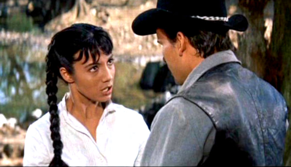 movies, The Magnificent Seven, 1960, Western