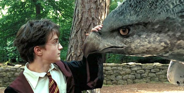 harry potter, Buckbeak