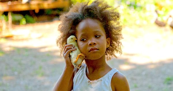 louisiana, liz, geo, chicken, beasts of the southern wild