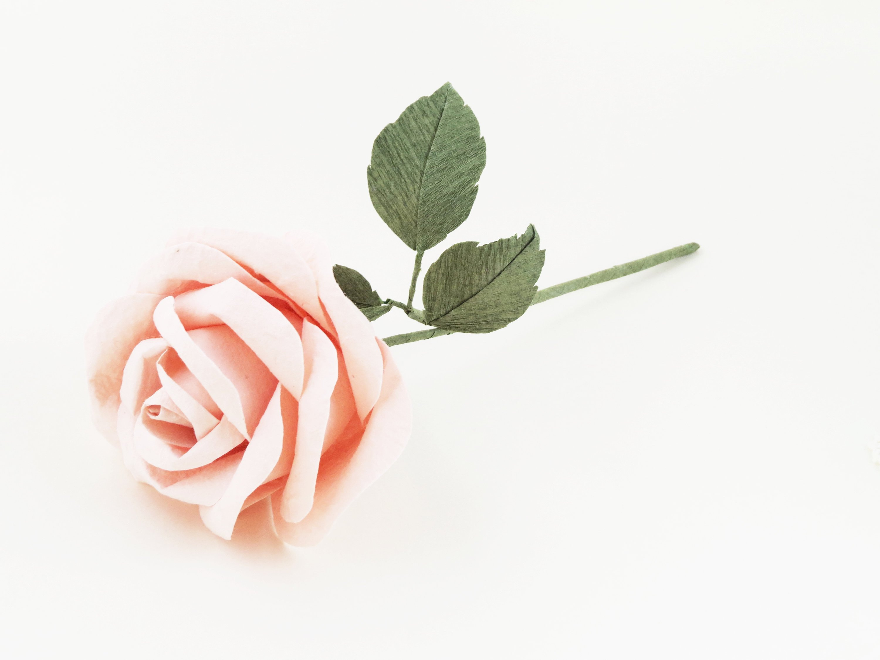 Paper rose from Etsy