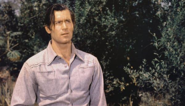 tv, celebs, cheyenne, 50s, clint walker