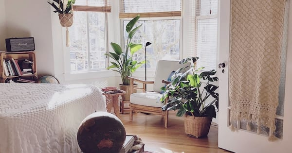 home, photo of an apartment with several houseplants, Give Your Place A Makeover With Plants