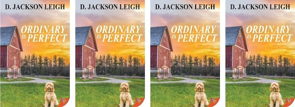 Small Town Romance Novels, cover of the book Ordinary is Perfect by D. Jackson Leigh, books