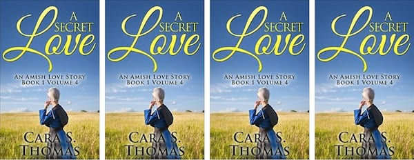 Amish Romance Novels, cover of A Secret Love by Cara S. Thomas, books